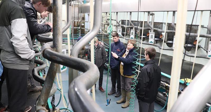 Pupils in Plumpton dairy parlour_61102