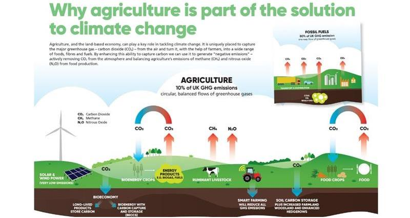 Why agriculture is part of the solution to climate change_71935