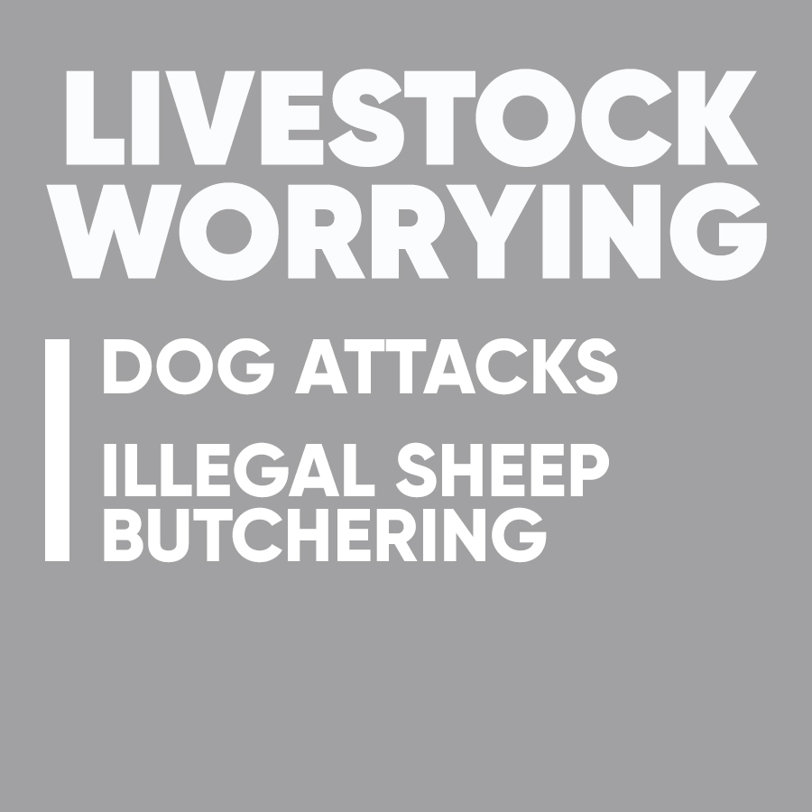 rural crime hub buttons livestock worrying