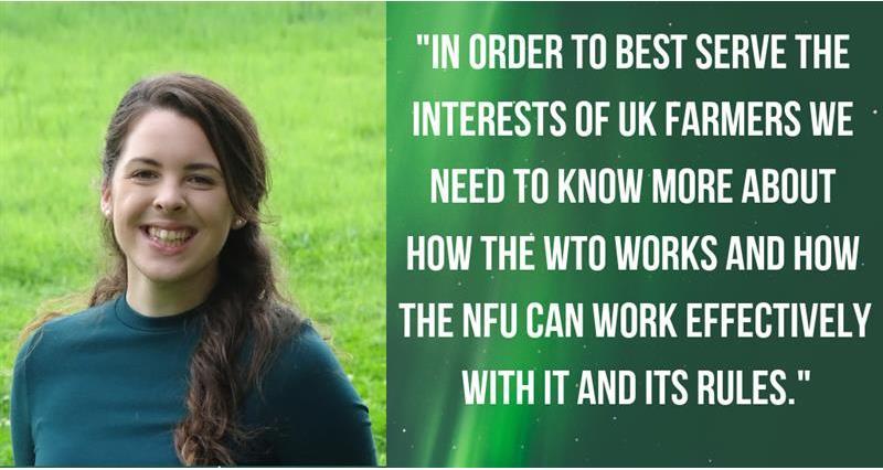Rebecca Hesketh - WTO blog_60625
