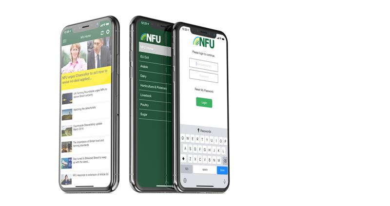 NFU App clean with room for text_63326