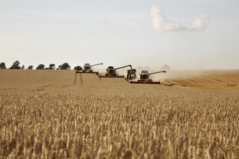 Combine harvesters_12295