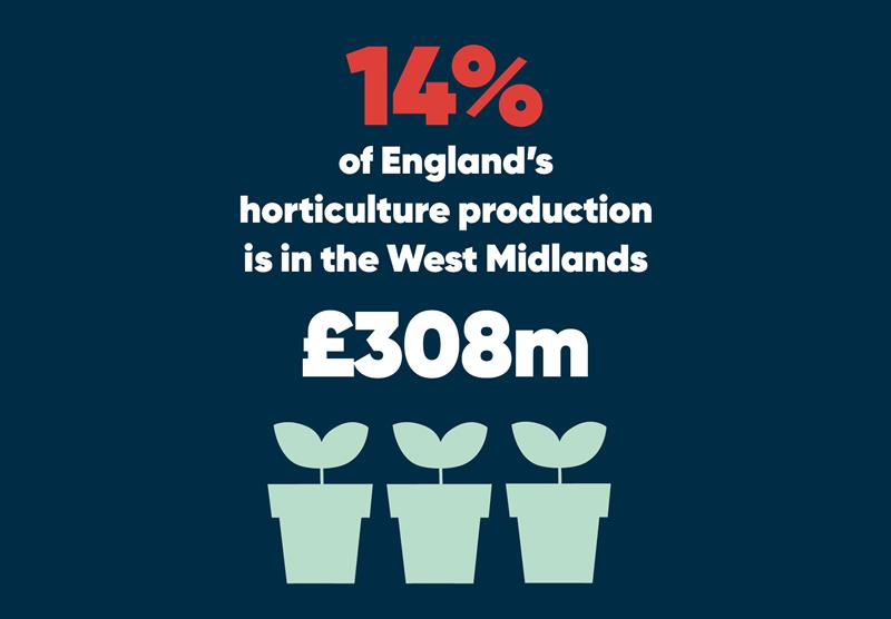 West Midlands infographics horticulture_70773