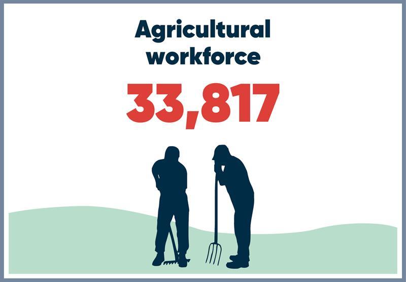 East Midlands infographics workforce_70762