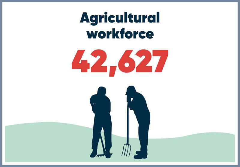 North East infographics workforce_70779
