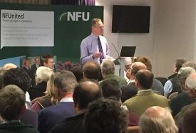 BPS meeting at Newmarket Racecourse_28025