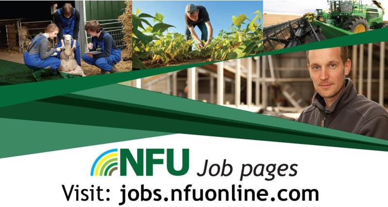 NFU member? Advertise jobs for free at NFU Job Pages