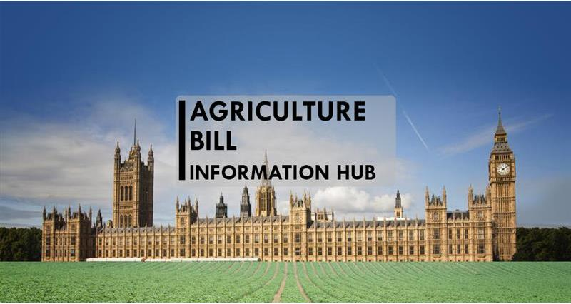 Agriculture Bill hub 2020A_71926
