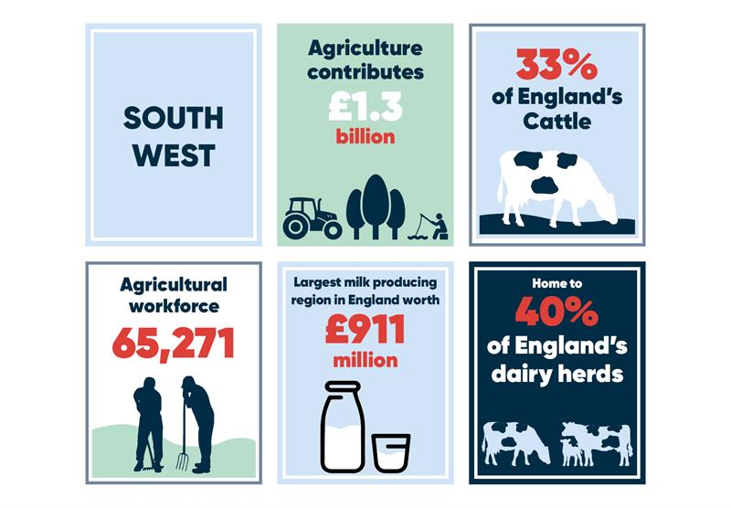 South West infographics main image_70749