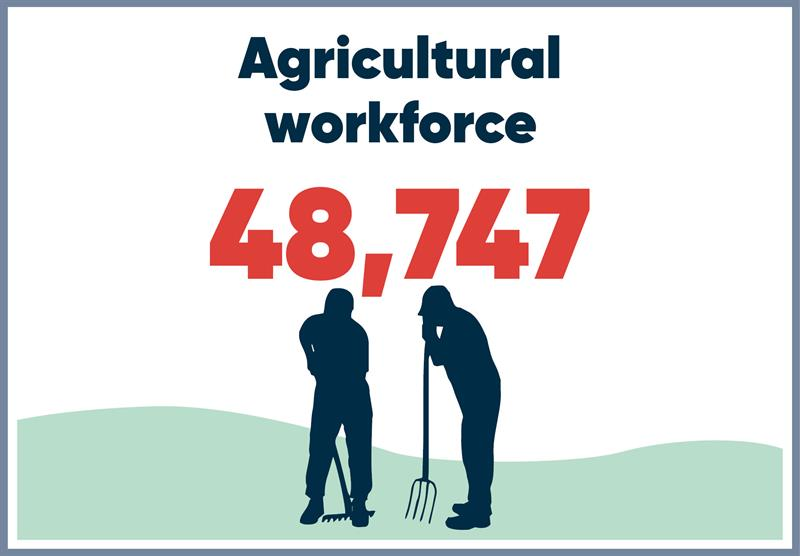 South East infographics workforce_70766