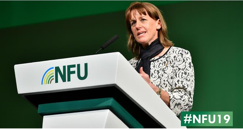 NFU19: NFU President's closing speech - watch again