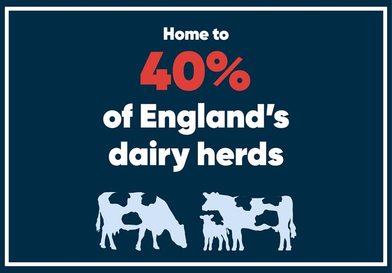 South West infographics dairy_70747