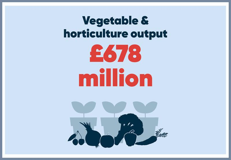 South East infographics vegetable output_70767