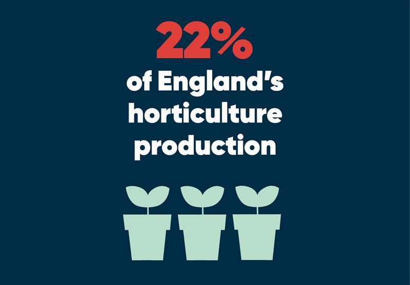 South East infographics horticulture_70768
