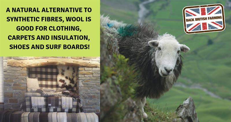 Wool uses and facts
