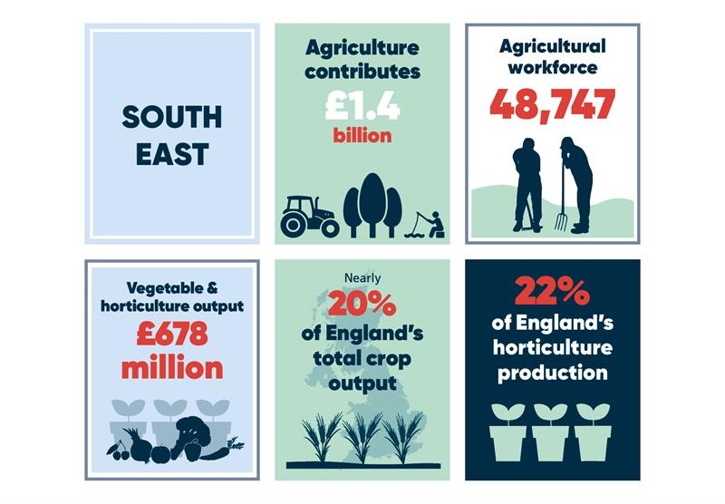 South East infographics main_70770
