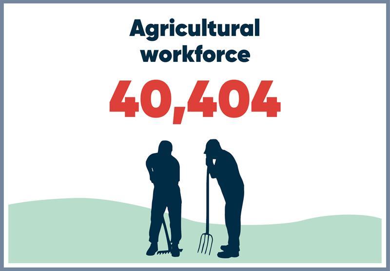 East Anglia infographics workforce_70755