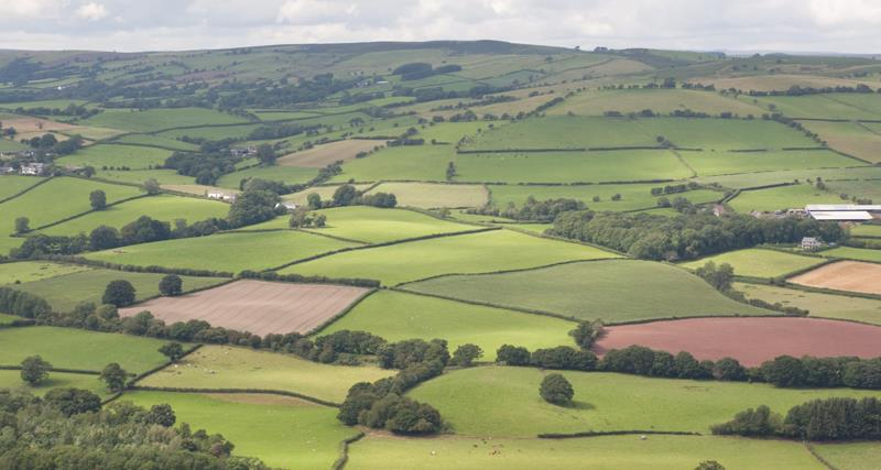 Rural affairs NFU Cymru_50756