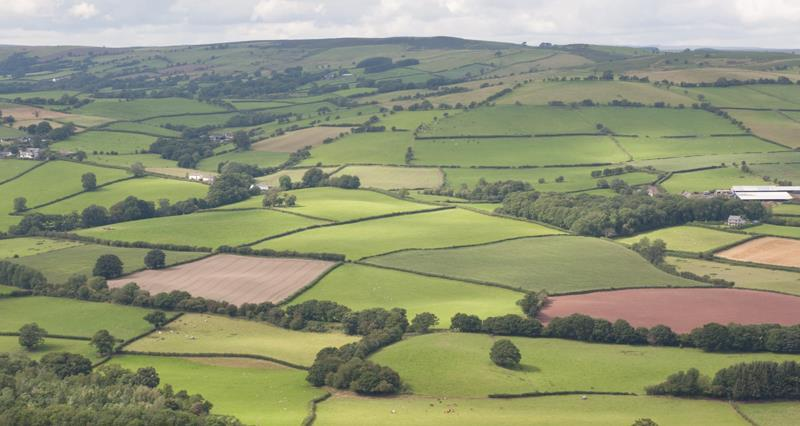 NFU Cymru announced as member of new Trade and Agriculture Commission