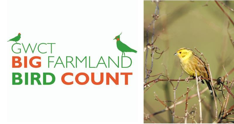 NFU sponsors Big Farmland Bird Count 2019