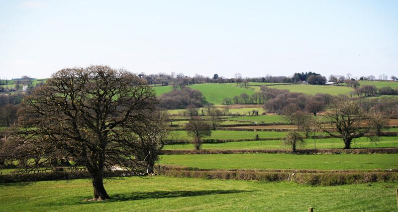 tenant farming nfu cymru_50761