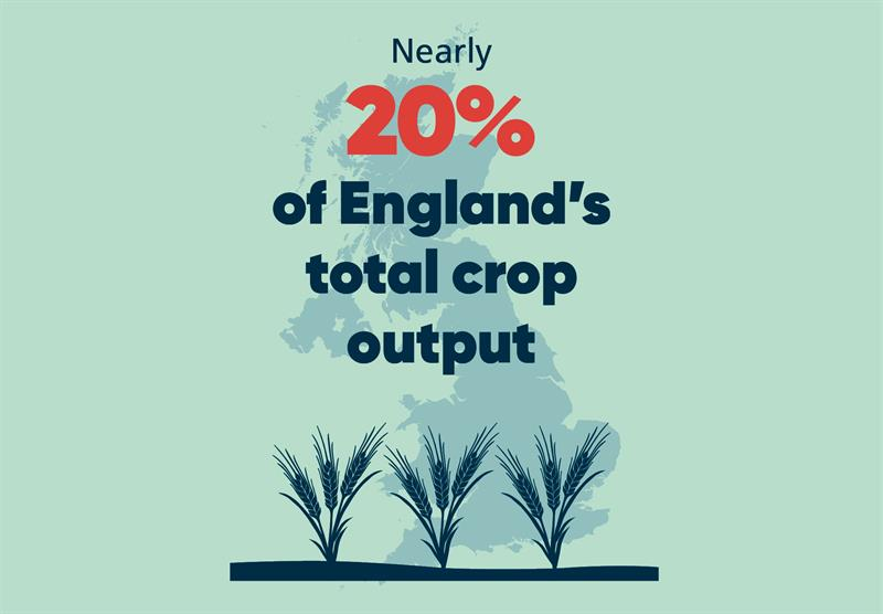 South East infographics crop_70769