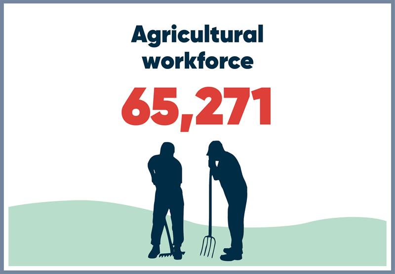 South West infographics workforce_70748