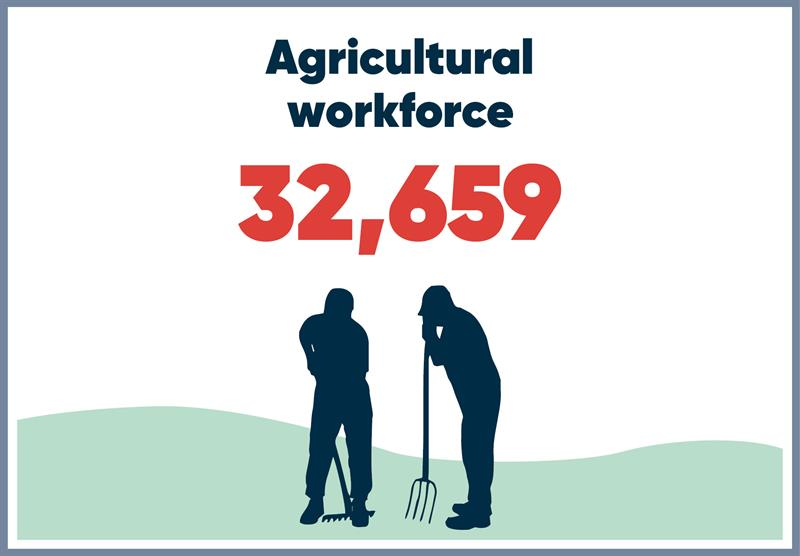 North West infographics workforce_70786