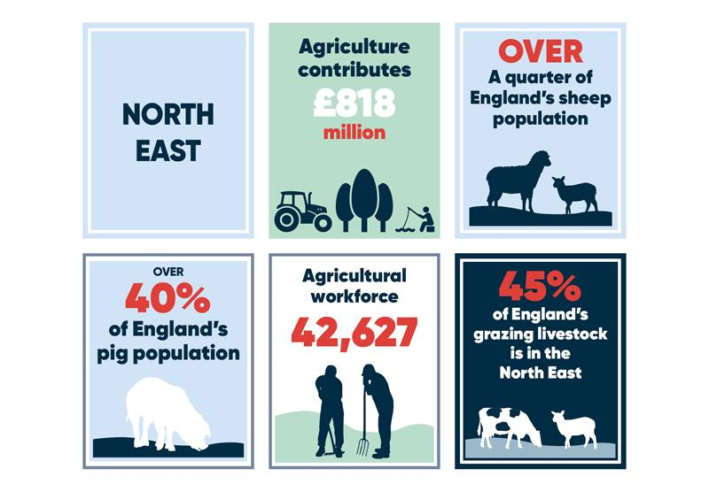 North East infographics main_70778