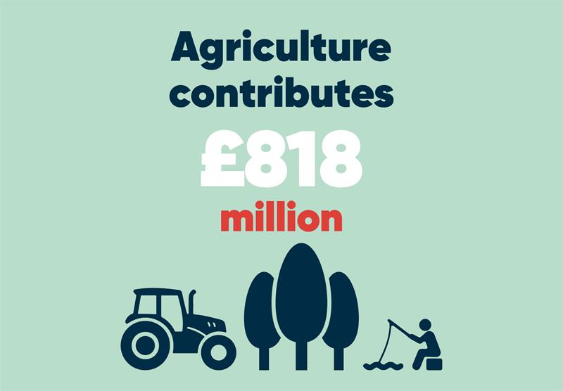 North East infographics agriculture's contribution_70782