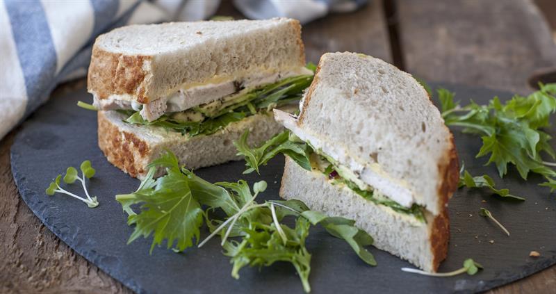 Chicken and avocado sandwich_65146