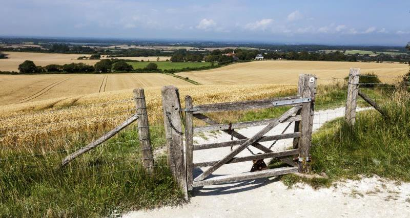 Footpath in Wilmington, East Sussex_12314