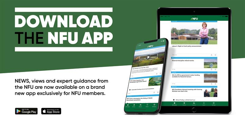 Top 5 reasons to download the NFU App