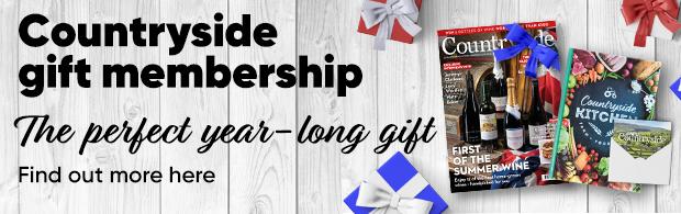 Gift membership June issue _78496