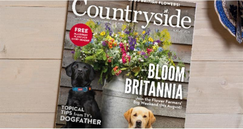 Countryside August magazine_67154
