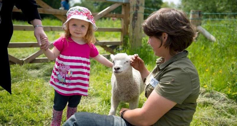 Open Farm Sunday Swillington Farm_15798