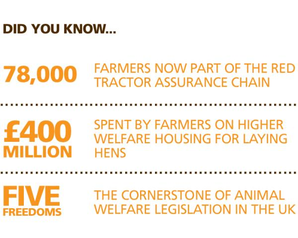 Stats - animal welfare