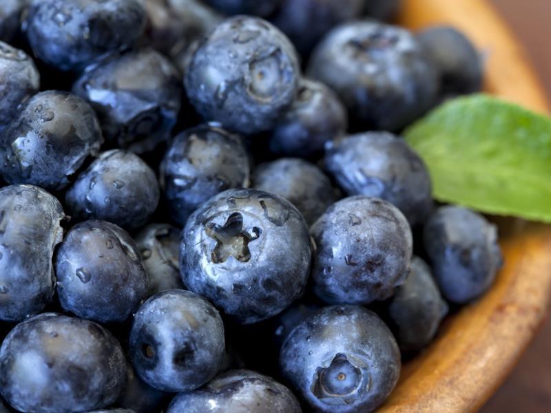 Blueberries_6466
