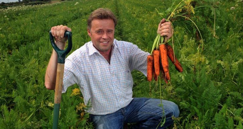 MH Poskitt Carrots_15244
