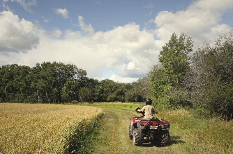Quad bike in field_13222