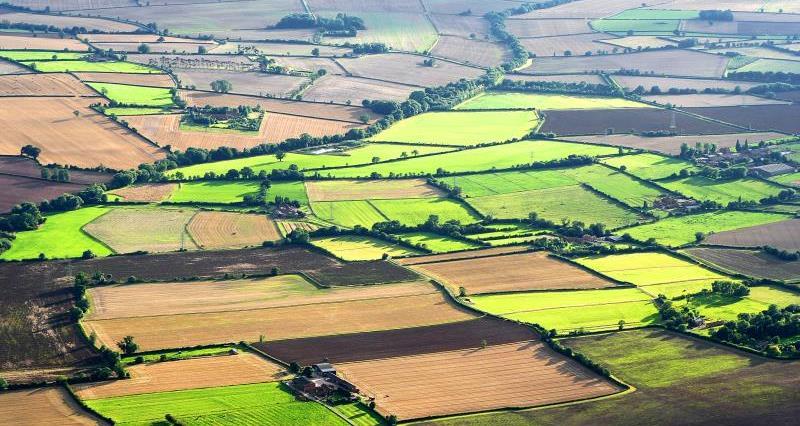 Nottinghamshire landscape_7466