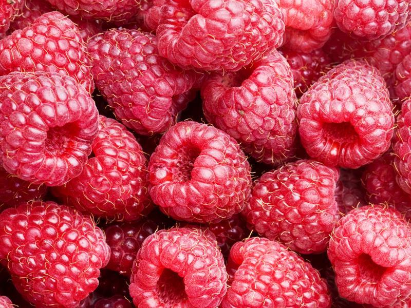raspberries _6523