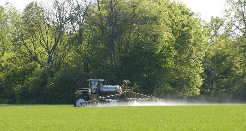 spraying wheat_7818