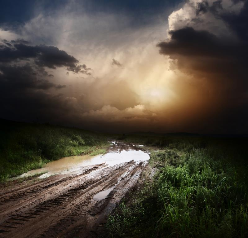 Muddy track_13194