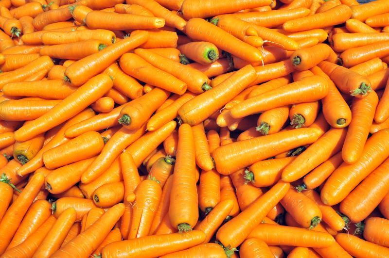 MH Poskitt Carrots_15237