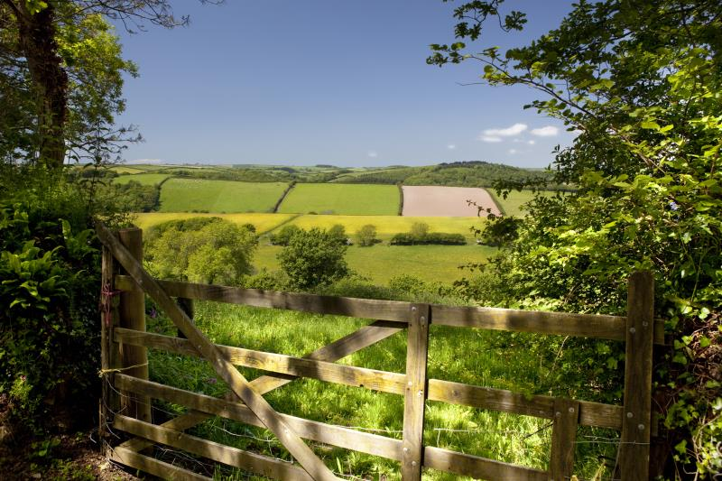 Gateway to fields_7534