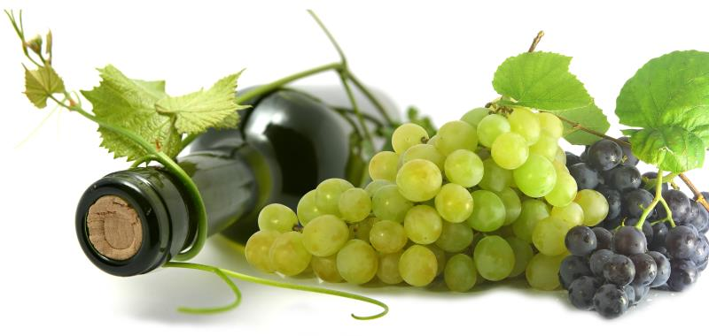 wine bottle and grapes_10990