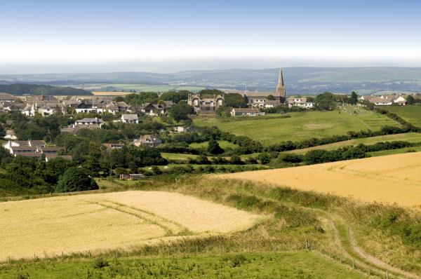 Devon countryside_7512