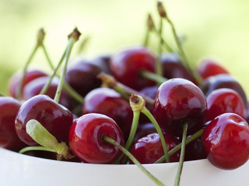Cherries_6473