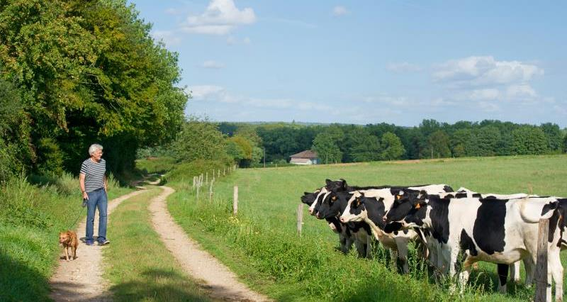 Updated guidance on livestock and rights of way